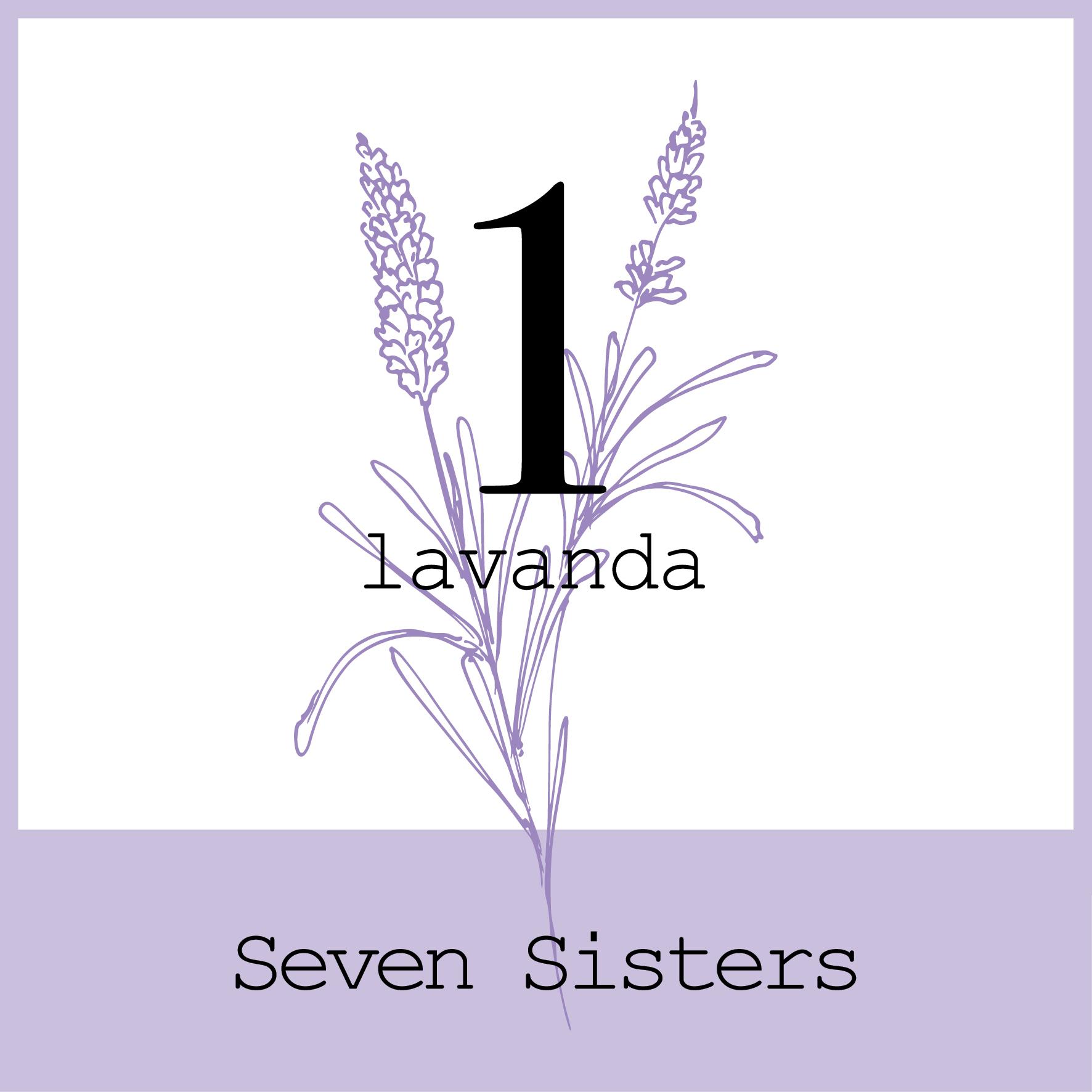 Il primo oleolito spagirico della Linea Seven Sisters. L'oleolito di fiori di Lavanda è indicato per pelli delicate e grasse con tendenza acneica.